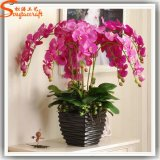 Hot Sale Artificial Fabric Flower Butterfly Orchid Art for Wedding Decoration