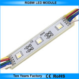 High Quality 12V SMD 5050 Waterproof RGBW Module LED