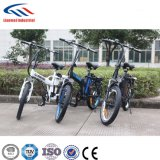 250W Brushless Motor TUV Certificated Stock Lithium Aluminum Alloy Electric Bicycle