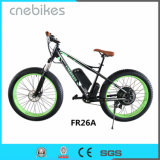 "Advantage Cheap Price 26"" Fat Tire Electric Snow Bicycle"