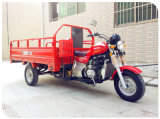 Cargo Tricycle 250cc Tricycle Water Cooling Three Wheel Motorcycle