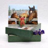 Wholesale Custom Printing Happy Birthday Greeting Card, Christmas Greeting Card Printing