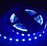 Cheaper Price DC12V SMD3528 LED Ribbon Strip Lighting (Single Color)