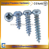 Carbon Steel Glvanized Pan Head Self Tapping Screws M4 M5 M6