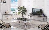 Modern Living Room Furniture European Stylish Black Glass Center Sofa Coffee Tea Table