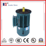 Cast Iron Frame Mini-Sized AC Brake Motor with Wholesale Price