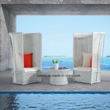 Good Design Popular 5start Hotel Project Furniture Outdoor Pool Side High Back Sofa Set Lover Set (YT571-3PCS/set)