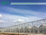Modern Film Greenhouse for Sale
