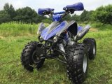 110cc Sports ATV with Full Automatic Gears for Kids