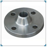 Stainless Steel Flange Ss304 Forged Flange, Ss316 Flange