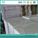Cheap Granite G603, Grey Granite, Chinese Granite for Paving