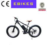 48V 750W Bafang MID Motor Mountain Bike for Beach Snow