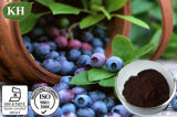 Natural Bilberry Extract Anthocyanidins 15%-25%, Anthocyanins 15%-35% by HPLC