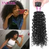 Wholesale Price Hot Sellers Brazilian Human Hair Extension Malaysian Curly Hair Weave