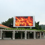 IP65 P10 Outdoor LED Panel Display for Advertising