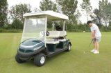 Electric Golf Buggy with Solar Panel for Low Cost