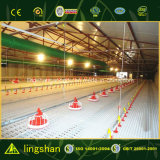 Low Cost Design Prefabricated Steel Structure Poultry House 10000 Chickens