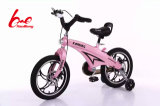 "12""14"" 16"" Cheap Children Bicycle/ Baby Bike/ Kids Bike"
