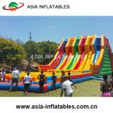 Inflatable Hippo Slide for Outdoor Inflatable Amusement Park