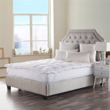 Wholesale Easy to Sleep All Sizes 100% Duck Feather Soft and Warm Mattress Topper