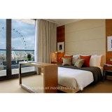 Modern Design Bedroom Furniture Wardrobe Hotel Room Furniture (KL TF 0022)