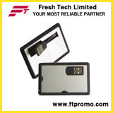 Custom Credit Card Style USB Flash Drive (D602)