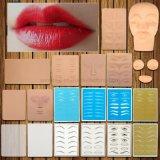 Tattoo Practice Skin for Tattoo Artists Blank Pmu Eyebrow Lip Microblading Beginners Cosmetic Beauty