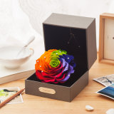 Hot Sale Constellation Preserved Flowers Gift for Home Decoration