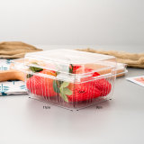 Factory Wholesale Disposable Pet Clear Packaging Box Fruit Blister