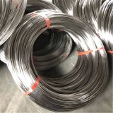 Stainless Steel Wire (Round, Flat, Shaped) with Different Hardness