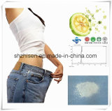 ODM/OEM  Natural Plant Extarcts   High-Quality Garcinia Cambogia Extract Loss Weight Capsules