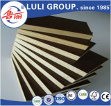 Cheap Combi Core Marine Plywood