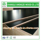 18mm Cheap Price Black Film Faced Plywood