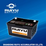 12V Automobile Battery for African