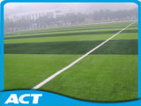 Soccer Field Turf Artificial Grass with Fifa Certified Mds60