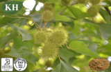 Sweetgum Extract Treatment of Cancer