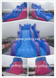Inflatable Amusement Park, Inflatable Dry Slide Game