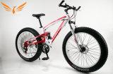 Fat Tyre Mountain Bike / Bicycle