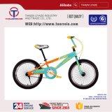 "Popular New 20"" Steel Frame Alloy Rim Freestyle BMX Bikes"