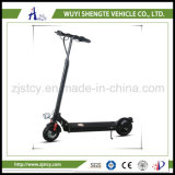 25.350W Electric Scooter with Ce Approval