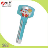 Factory Price Hot Sales Custom Colorful Fashion Metal Art Blank Key for Locks