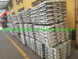 Shg Zinc Ingot 99.995% Zinc Ingots 99.99% for Sale