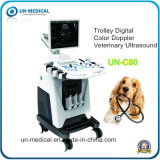 17-Inch Medical Ultrasound Bone Densitometer Test for Veterinary