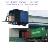 Consolidate Professional and Efficient Shipping Service in China