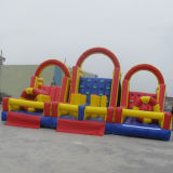 Commercial Inflatable Playground for Amusement Park (CYFC-404)