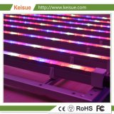 LED Grow Light Fixture with 8 PCS Lamps