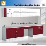 Electric Dental Lab Cabinet with Sink