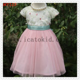 Children Fashion Party Summer Tulle Dress for Girls