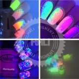 1kg Night Glow Ultrafine Fluorescent Effect 12 Colors Glow in The Dark Nail Art Glitter Pigment 3D Powder Decoration