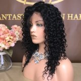 Hot Sales Human Hair Lace Frontal/Full Lace/360/U Part Wigs with Whole Sale Price Wig-063